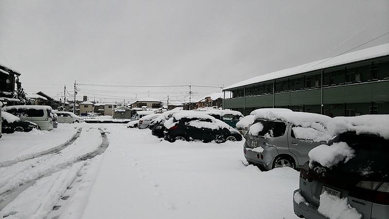 雪です0118-1.jpg