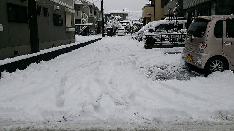 雪です0118-2.jpg